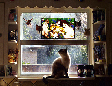 stained-glass-kitties2
