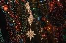 newell lights 3