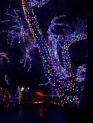vitruvian-lights-02
