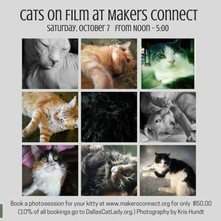 Cats on Film with Cat a Palooza Makers Connect Dallas
