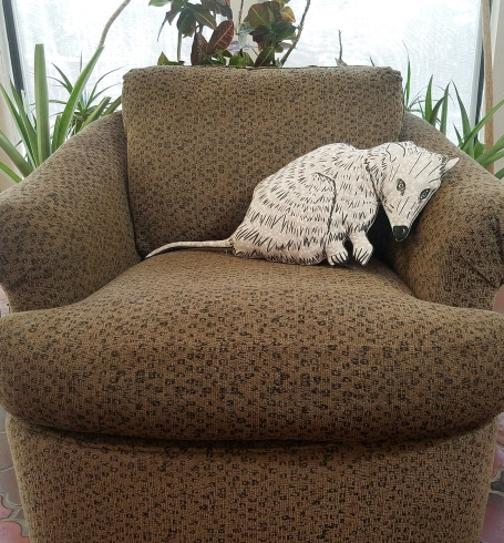 possum chair screen